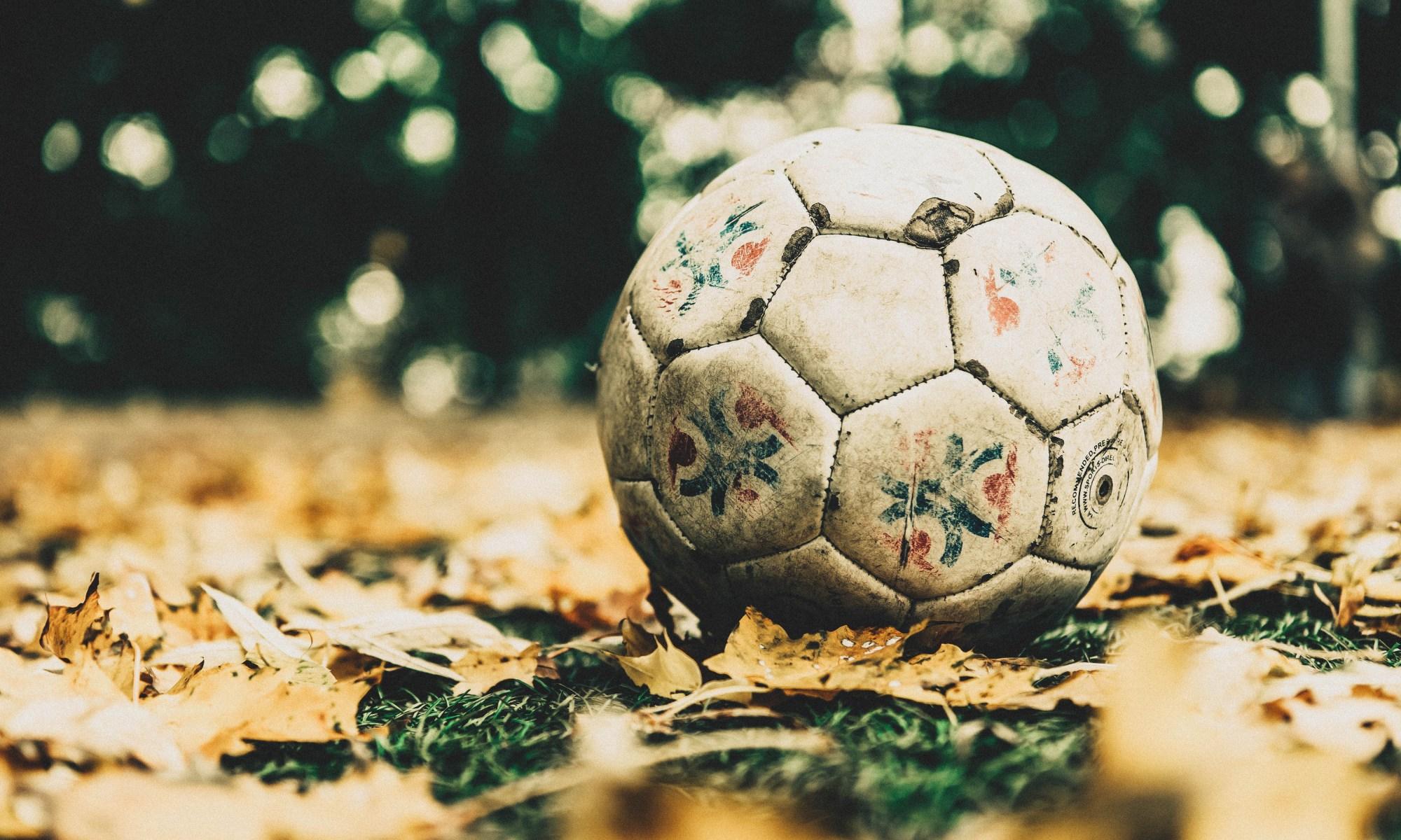 Pelota-hojas-balón